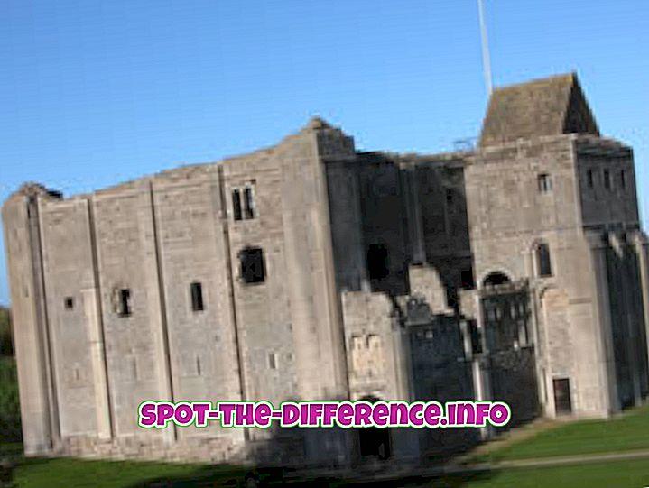 Perbedaan antara Castle dan Fort