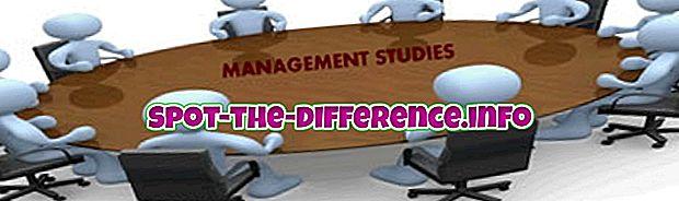 beliebte Vergleiche: Unterschied zwischen Management-Studium und Betriebswirtschaft