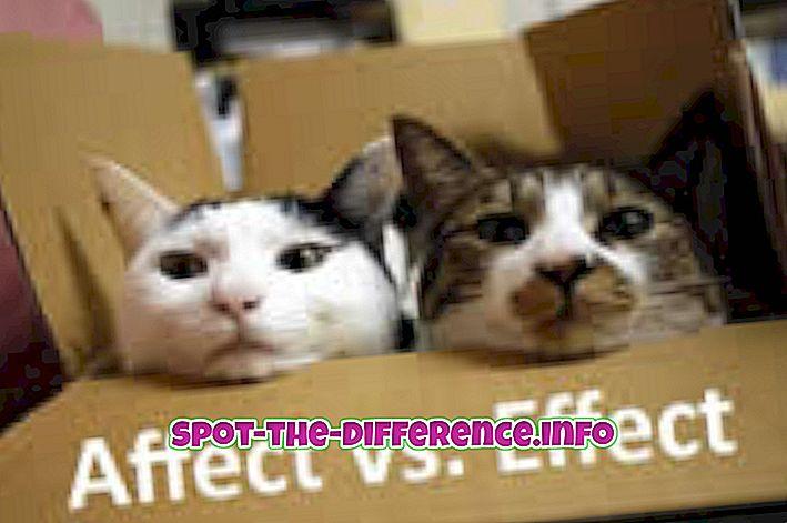 Diferența dintre efect și efect