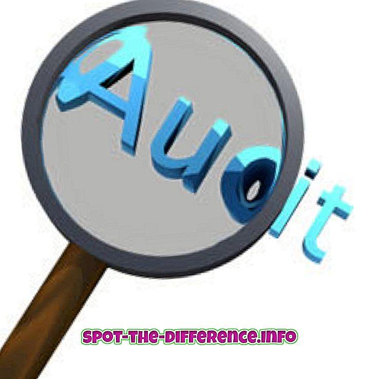 Diferença entre auditoria e inspeção