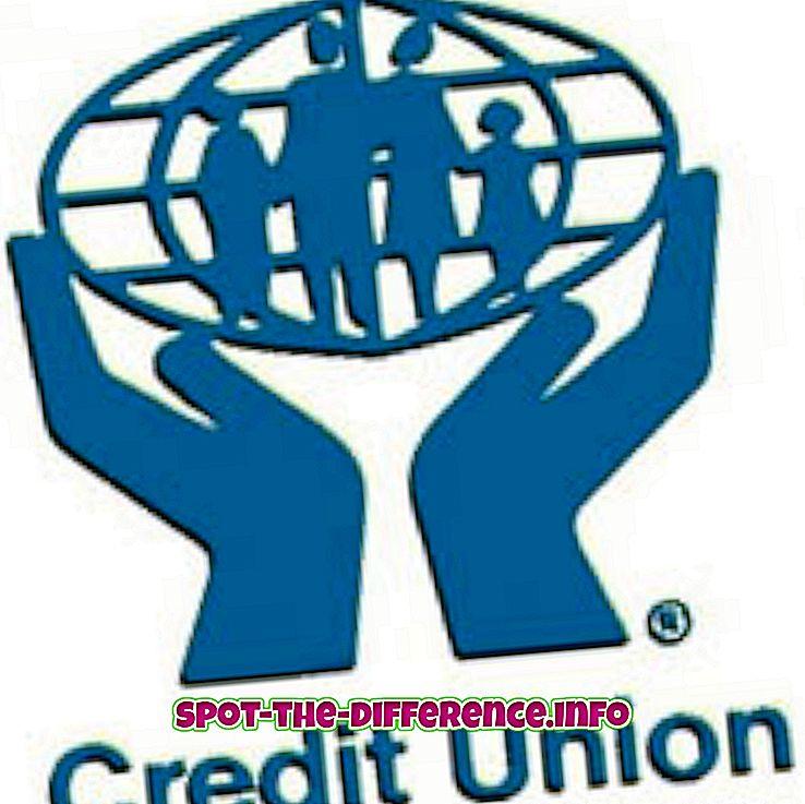 populære sammenligninger: Forskjellen mellom Bank og Credit Union