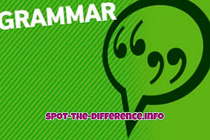 Diferença entre gramática e vocabulário