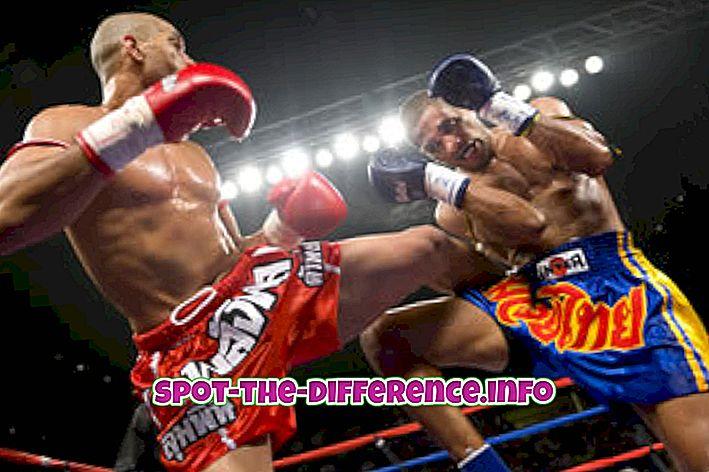 Rozdiel medzi kickboxingom a boxom