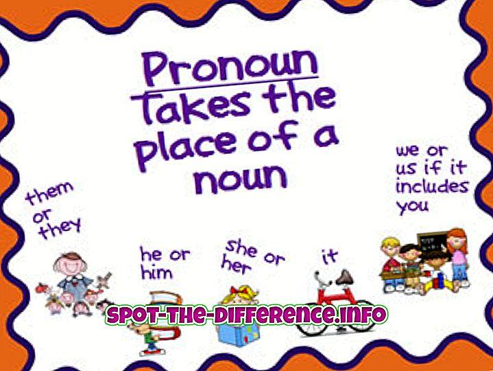 Sự khác biệt giữa Đại từ và Danh từ riêng