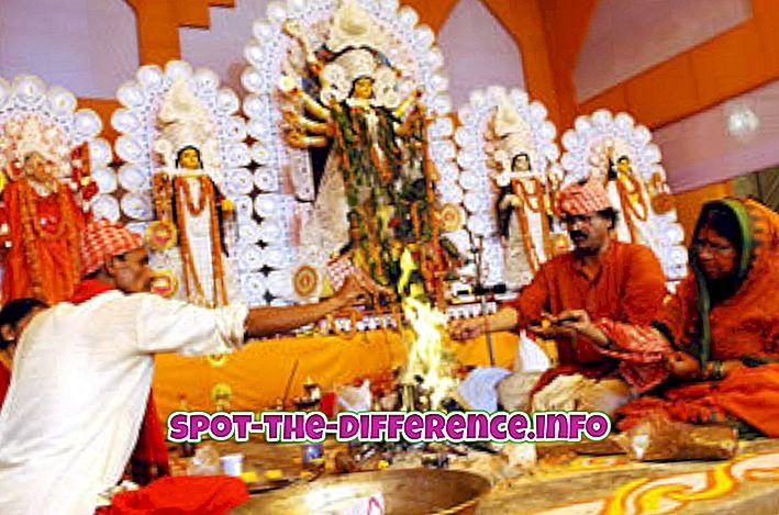 popularne usporedbe: Razlika između Puje i Bhakti
