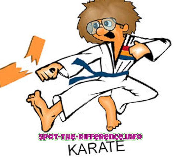 popularne porównania: Różnica między karate, kung fu i taekwondo