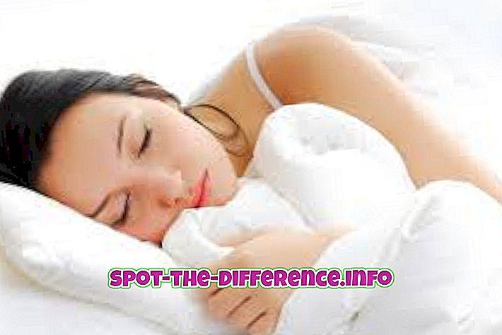 Razlika između stanja mirovanja i sna