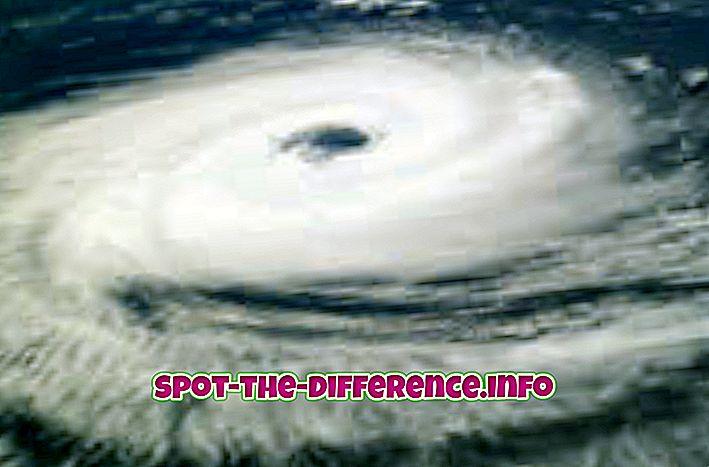 populární srovnání: Rozdíl mezi cyklóny a tajfuny