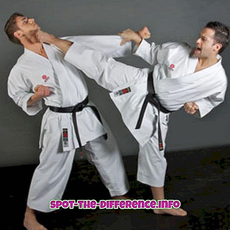 comparaciones populares: Diferencia entre Karate y Artes Marciales.