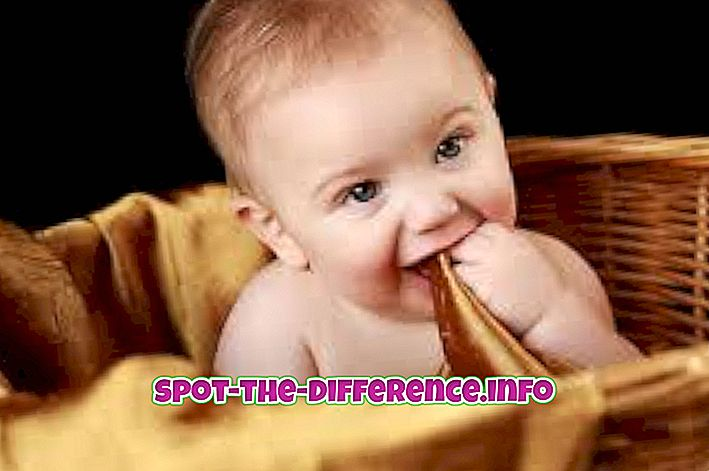 Διαφορά μεταξύ βρέφους και παιδιού