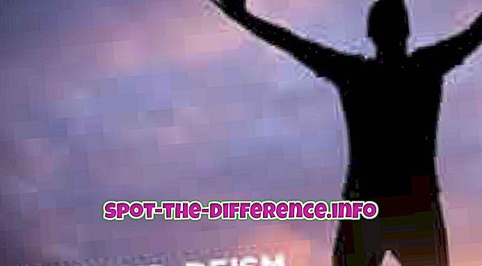 Η διαφορά μεταξύ Theist και Deist