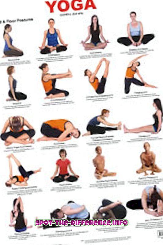 comparaciones populares: Diferencia entre Yoga y Power Yoga