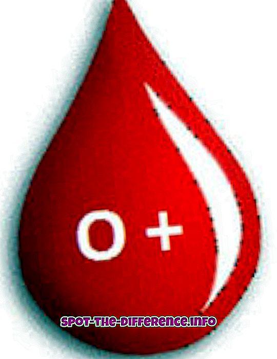 Differenza tra O + e O- Gruppo sanguigno