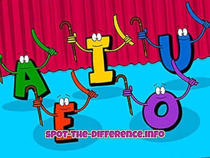 comparações populares: Diferença entre Vogais e Consoantes
