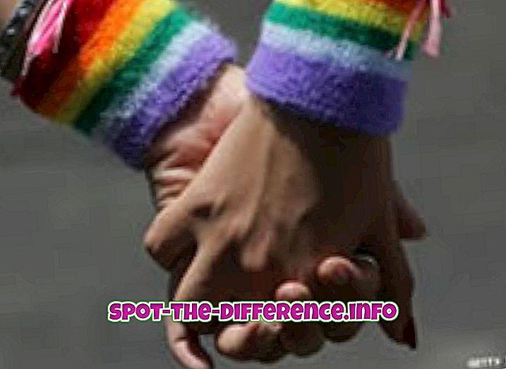 tautas salīdzinājumi: Starpība starp geju un impotentu