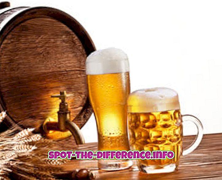 populære sammenligninger: Forskjell mellom øl og øl