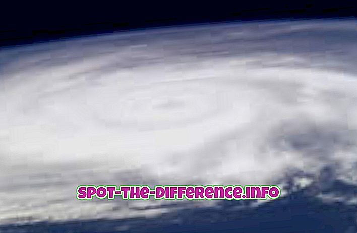 comparaisons populaires: Différence entre cyclone et ouragan