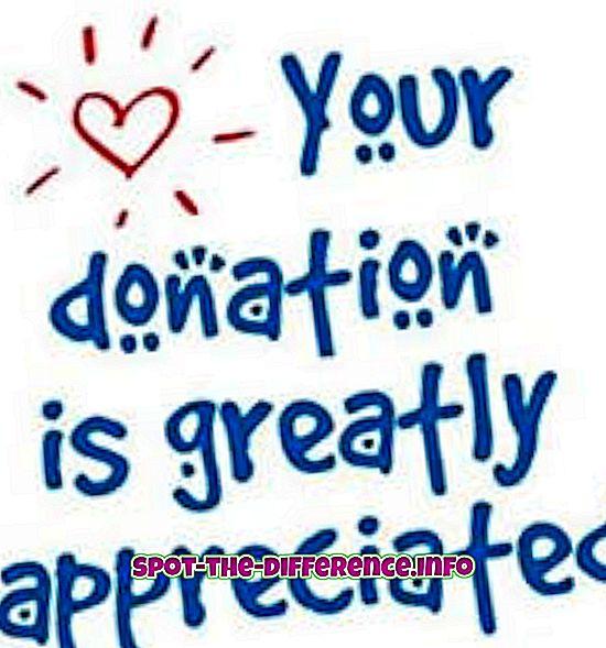 popularne usporedbe: Razlika između donacije i ljubavi