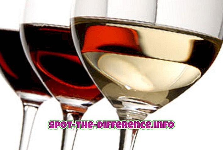 Unterschied zwischen Wein, Weinbrand und Champagner