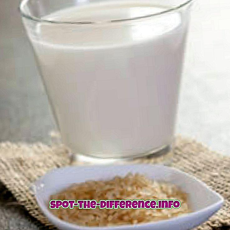 comparații populare: Diferența dintre laptele de orez și laptele de soia