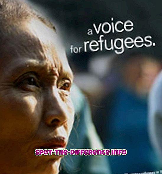 beliebte Vergleiche: Unterschied zwischen Flüchtling und Asylee
