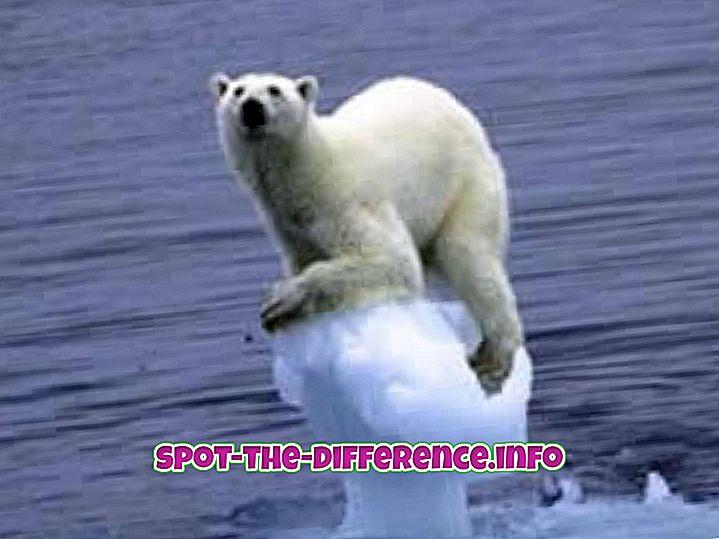 ความแตกต่างระหว่างการเปลี่ยนแปลงภูมิอากาศและภาวะโลกร้อน