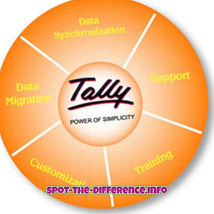 популарна поређења: Разлика између Талли-а и САП-а