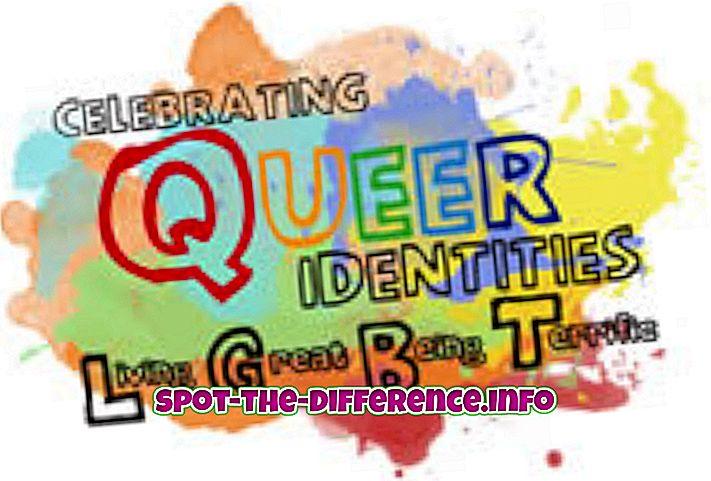 Verschil tussen Queer en Transgender