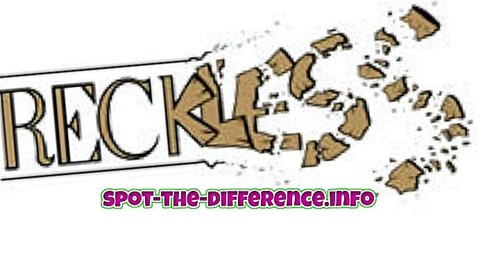 Erinevus Reckless ja Impulsive vahel