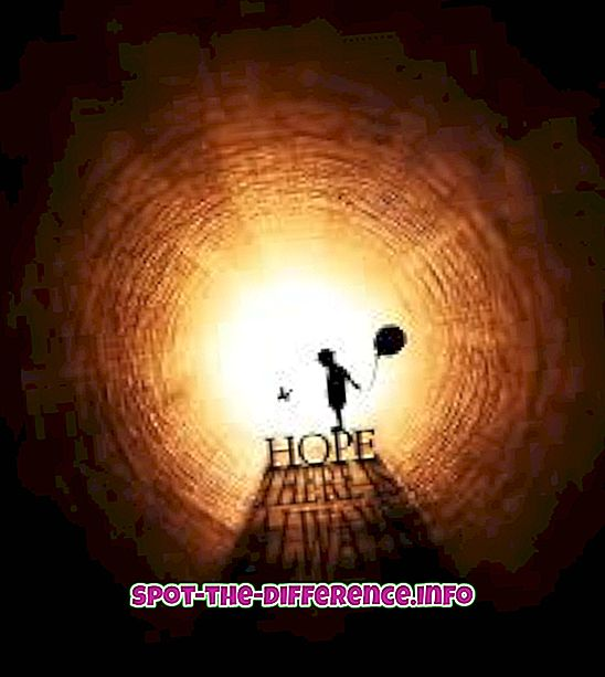 beliebte Vergleiche: Unterschied zwischen Hoffnung und Erwartung