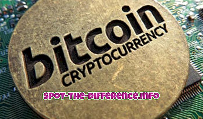 confronti popolari: Differenza tra Bitcoin e Ripple