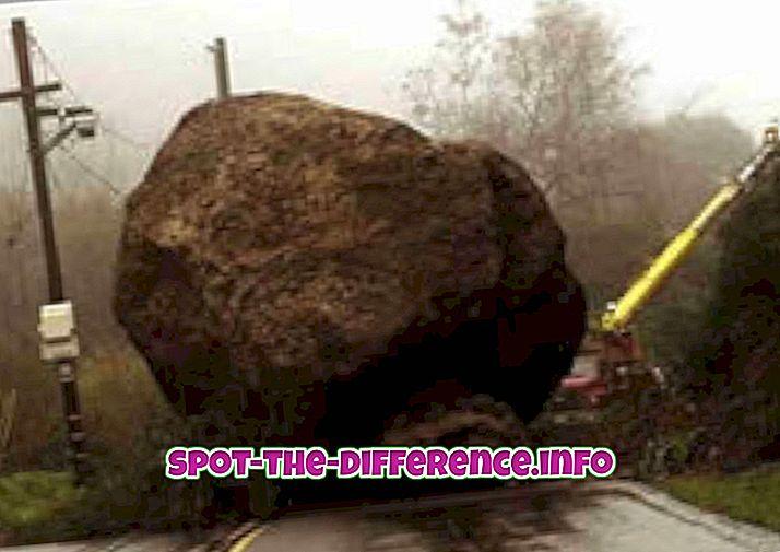 Forskel mellem hindring og hindring