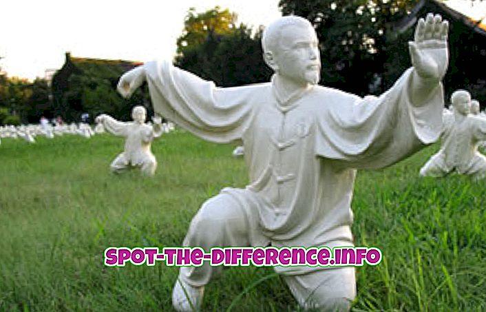 Starpība starp Tai Chi un Tai Chin Chuan