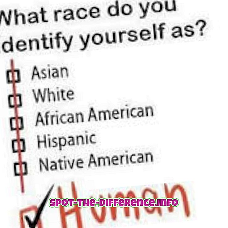 Rozdiel medzi etnicitou a rasou