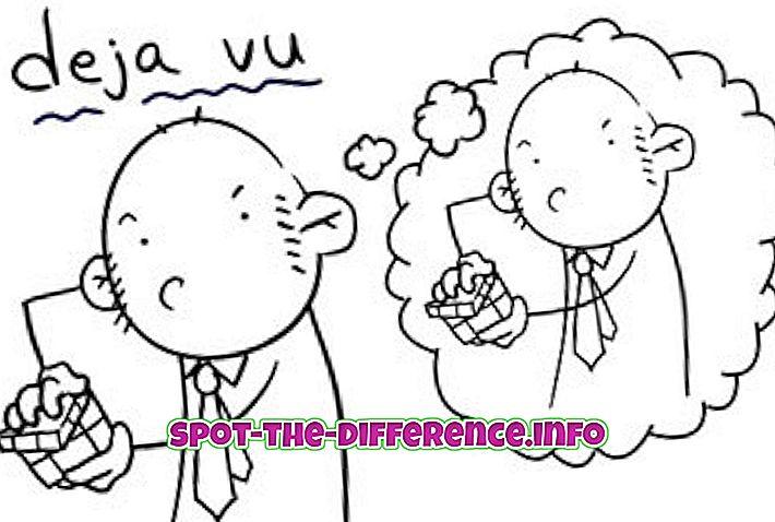Unterschied zwischen Deja Vu und Dreams