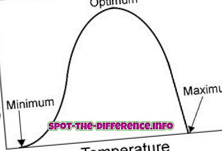 ความแตกต่างระหว่าง Optimum และ Maximum