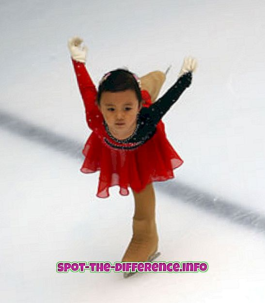 Perbedaan antara Ice Skating dan Sepatu Roda