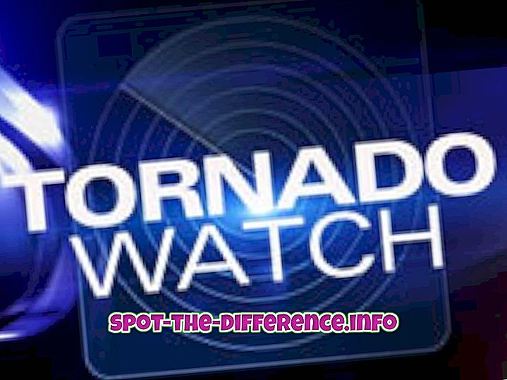 confronti popolari: Differenza tra Tornado Watch e Warning
