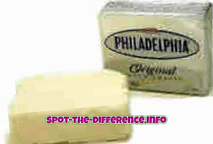 populære sammenligninger: Forskjell mellom Creme Cheese og Cream Cheese Spread