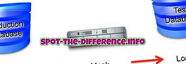 popularne usporedbe: Razlika između maskiranja podataka i zabunom podataka