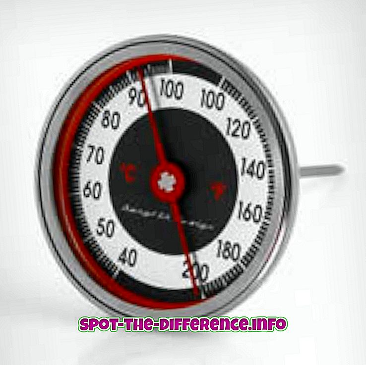 Erinevus liha termomeetri ja kommi termomeetri vahel