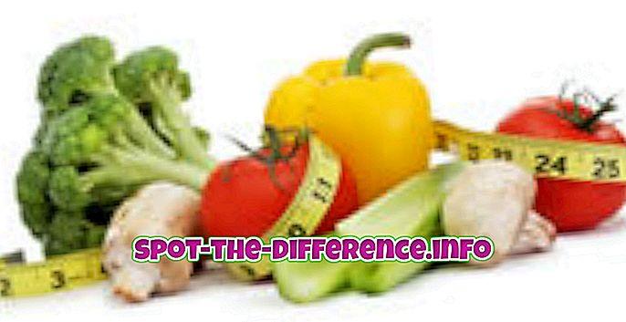 népszerű összehasonlítások: A dietetikus és a táplálkozási szakember közötti különbség