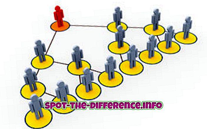 Forskjellen mellom distributør og forhandler