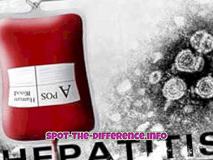 suosittuja vertailuja: Hepatiitti A: n ja B: n välinen ero