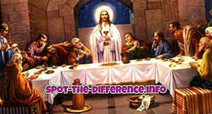 beliebte Vergleiche: Unterschied zwischen Apostel und Schüler