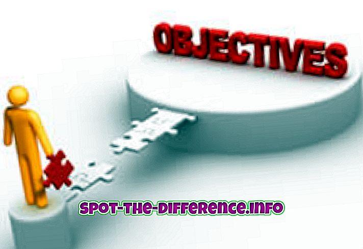 Erinevus objektiivse ja subjektiivse vahel
