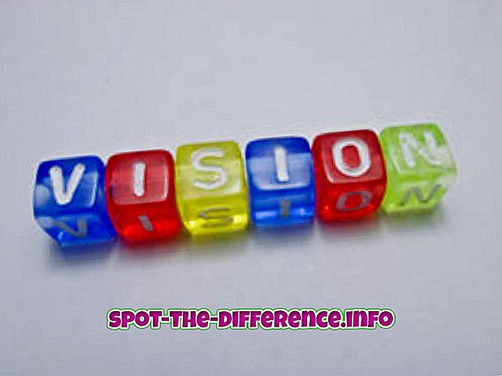populaarsed võrdlused: Erinevus nägemuse ja unistuse vahel