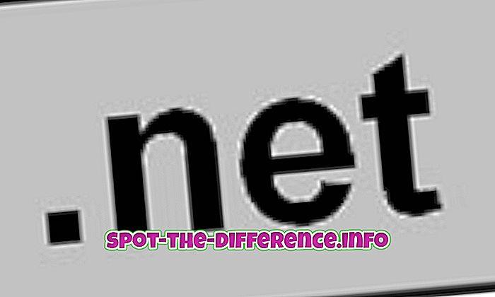 populære sammenligninger: Forskjellen mellom .net og .com