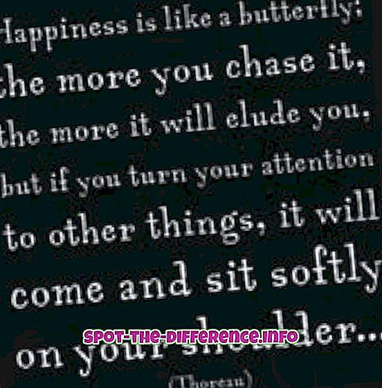 Onnellisuuden ja tyytyväisyyden ero