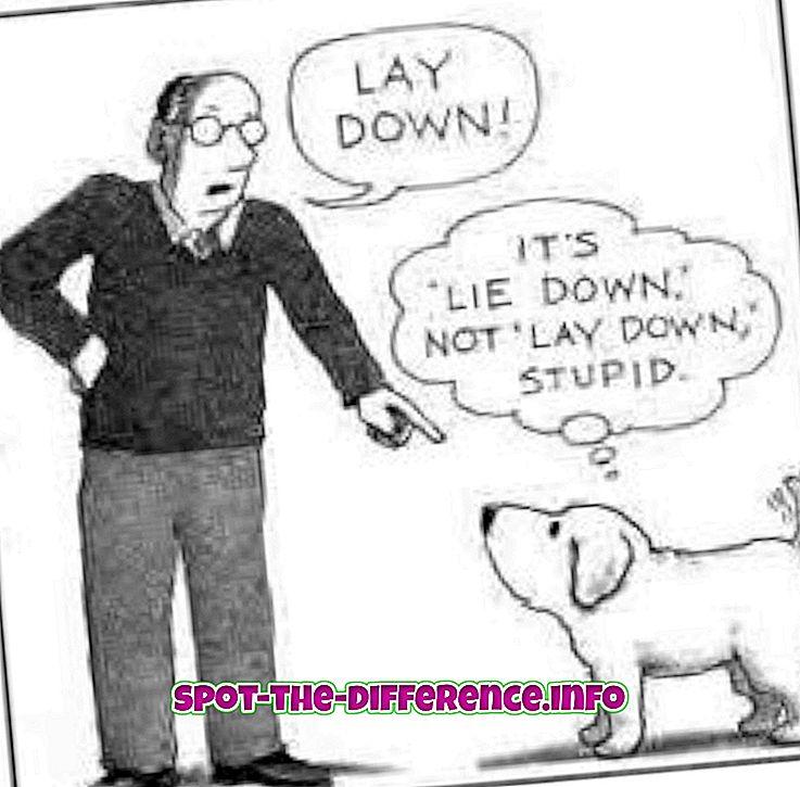 populární srovnání: Rozdíl mezi Lay a Lie